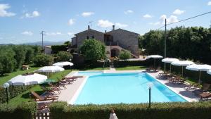 Piscina con Solarium Casa Vacanze Ribocchi 1